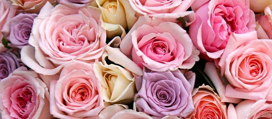 Дарите цветочную радость близким людям